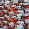 Brichete Cocs Petrolier Carbune de Foc